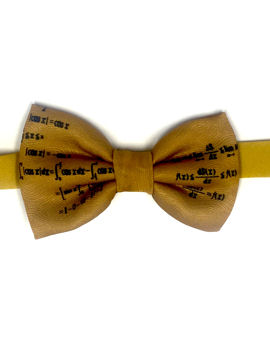 Maths Bow Tie