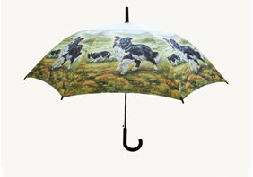 UMBRELLA - Collie Dogs