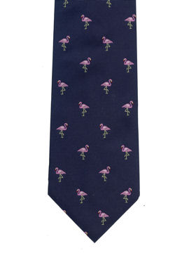 Flamingos on Navy
