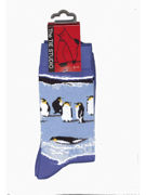 Penguin Socks - TIE STUDIO