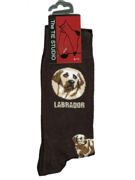 Labrador Dog socks